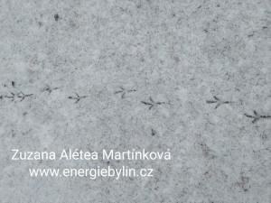 Stopy ve sněhu1